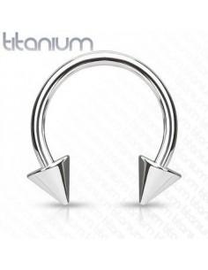 Titanium Circular Barbell with Balls